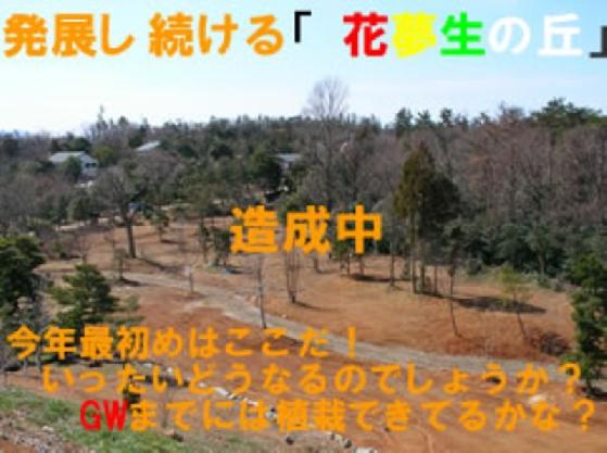 20050319145011de03e6d4A.jpg
